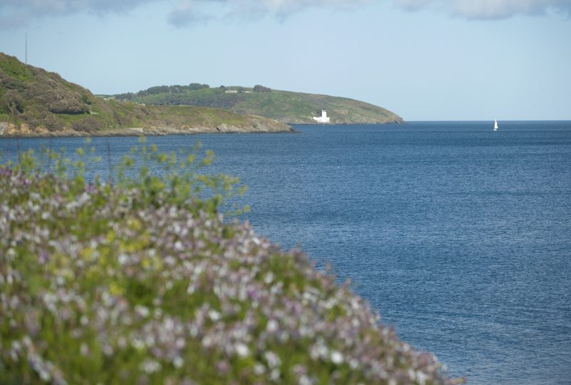 Falmouth by Adam Gibbard courtesy of Visit Cornwall