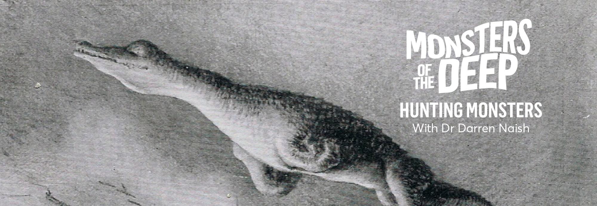 Darren Naish Hunting Monsters Talk